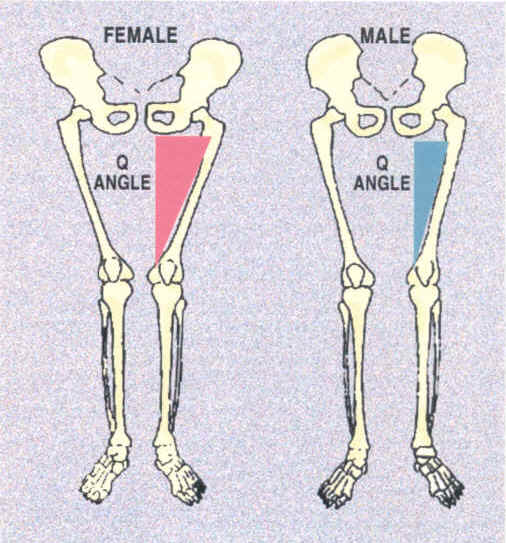 q-angle-men-vs-women